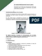 Ejemplo_caracterizacion.pdf
