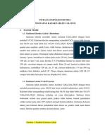02.-Jurnal Awal Kompleksometri Tablet Calsium