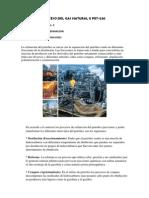 PROCESO DEL GAS NATURAL II PET.docx