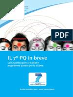 7° programma quadro guida