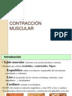 2010 Contraccion Muscular