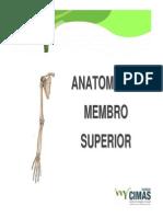 Anatomia Punho e Mão - Radiologia