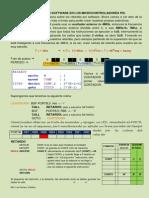 RETARDOS1 POR SOFTWARE EN LOS MICROCONTROLADORES PIC.pdf