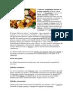 Alimentos y Sus Componentes
