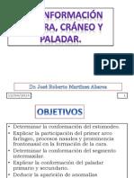 c4 Conformacic3b3n de Cara Crc3a1neo y Paladar (1)