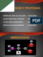 AMINOÁCIDOS CORREGIDO