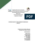 Informe Sobre Micro y Macro Ambiente de Mercado