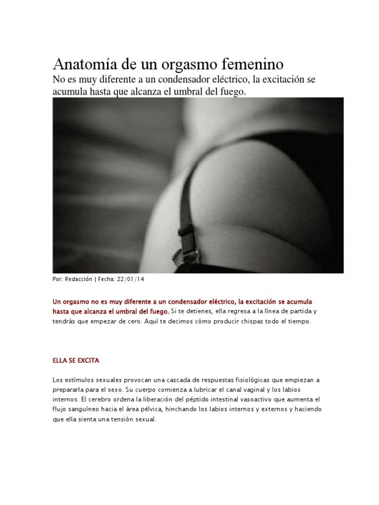 Increíble La Anatomía Vigina Composición - Anatomía de Las ...