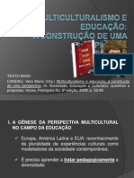 MULTICULTURALISMO E EDUCAÇÃO  1 power point
