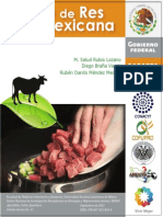 Manual Carne de Res Mexicana