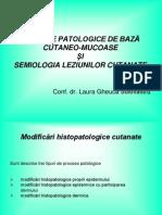 Dermatologie Curs Procese Patologice + Lez Elem