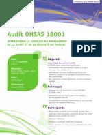 Audit OHSAS 18001 - Appréhender le contexte du management de la SST