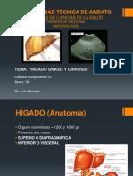 Higado Graso y Cirrosis-claudia Guayasamin