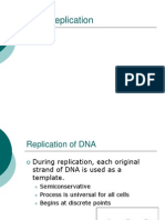 Replication - Transcription - Translation