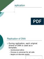 Replication - Transcription - Translation