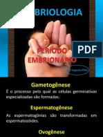 PERÍODO EMBRIONÁRIO
