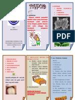 Promosi Kesehatan (Leaflet Thypoid)
