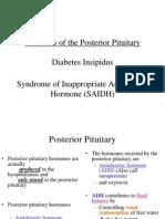 Dr.niarna Lusi Diabetes Insipidus