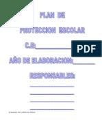 Plan de Proteccion Formato