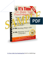 Sample of It's Time To Make Your Fundraising Plan E-Course