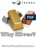 Why Silver 2013