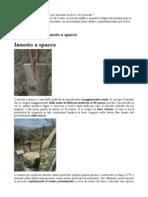 Calendario Innesti Pdf.Innesti Grafting Landscape Architecture
