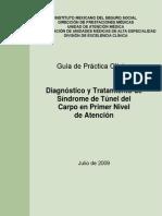 GPC Síndrome Tunel del Carpo.pdf