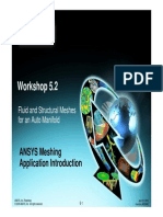 Fluid and Structural Meshes