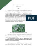 Biomimetica Sistemului Locomotor