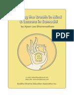 Keeping the Breath in Mind - DHAMMADHARO