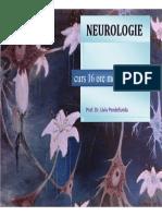 Schema CURS Neurologie
