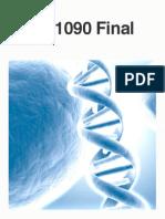 Biol 1090 Final Steph