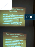 Pathanatomy Lecture - 05 Dystrophy + Abnormal Metabolism in Stroma & Vessels + Amyloidosis