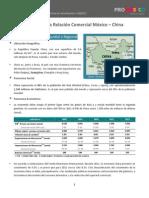 Relacion Comercial China Mexico Promexico 2012