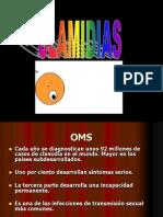 Clase Clamidias 08