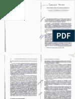 Graciela Maturo _ Notas Sobre Literatura Hispanomaricana _ Fantasia y Realismo en La Literatura