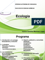 Primera Clase Eco