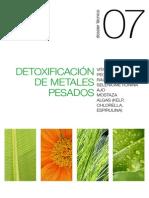 07 Detoxificación de metales pesados (Metal control)