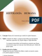 11mo Histología Humana   1