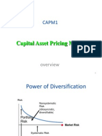 CAPM Overview