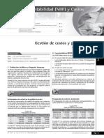 costosypresupuestos-130624220725-phpapp01