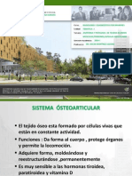 Sem 1 Clase -2 s. Osteoarticular Anatomia