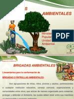 BRIGADAS AMBIENTALES