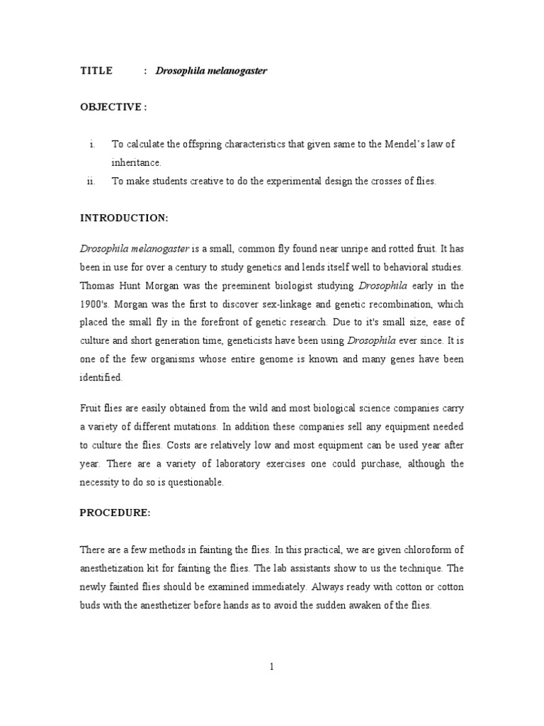 genetics of organisms lab report Biology lab report independent assortment & dihybrid cross introduction: in genetics, when the chi-square calculation sample can be observed in the methods and materials section of this lab report fruit fly lab genetics of organisms fruit fly genetics lab mendel's principles.