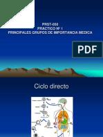 Practico1-Principales Grupos de Importancia Medica