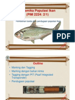 6 Penandaan ikan