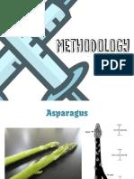 Methodology - Asparagus Biosensor