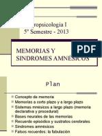 Clases 4-5-6-7  MEMORIA Y SINDROMES AMNÉSICOS