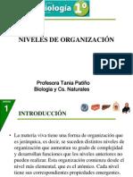 Clase Niveles de Organizacion