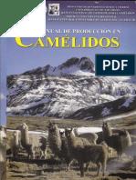 CAMELIDOS 1ra PARTE.pdf